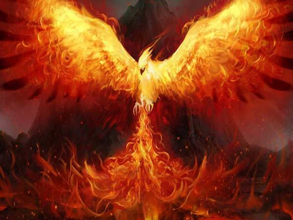 Mơ thấy lửa đánh con gì trúng lớn - Giấc mơ mang điềm báo gì?
