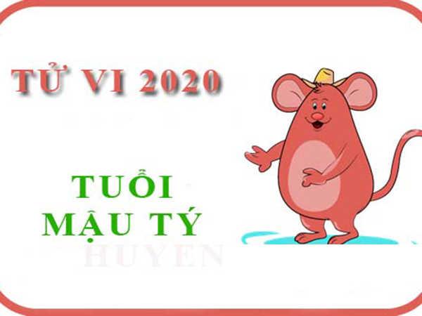 Tuổi Mậu Tý năm 2020: Nữ sao Thái Âm, nam sao Thái Bạch
