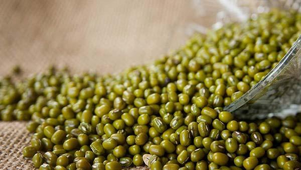 Ý nghĩa giấc mơ thấy hạt đậu xanh mang đến điềm báo gì