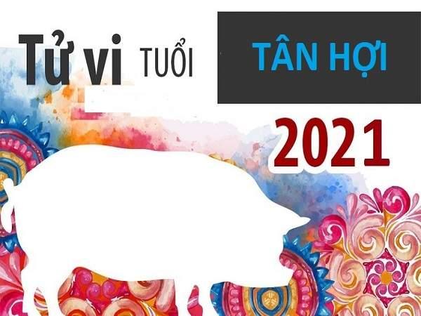 Tử vi tuổi Tân Hợi năm 2021