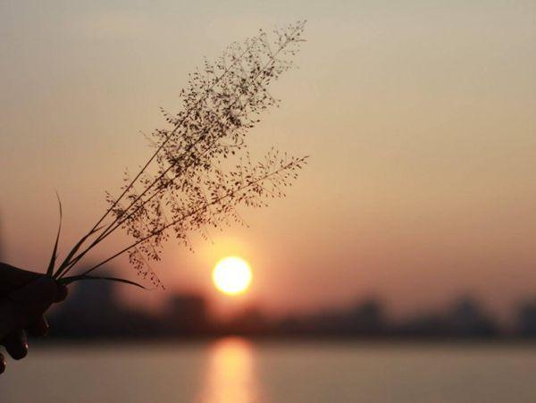 Mơ thấy mặt trời là điềm hung hay cát? Đánh con gì trúng lớn?